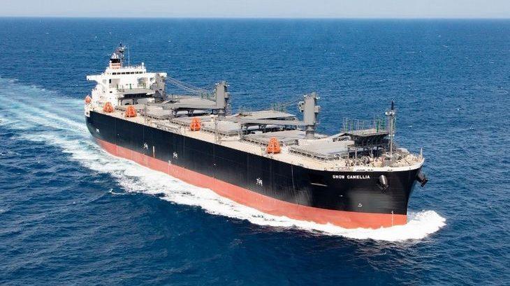 日本郵船、北越コーポ向け木材チップ専用船が完成