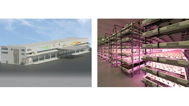セイノーHDが植物工場事業に新規参入