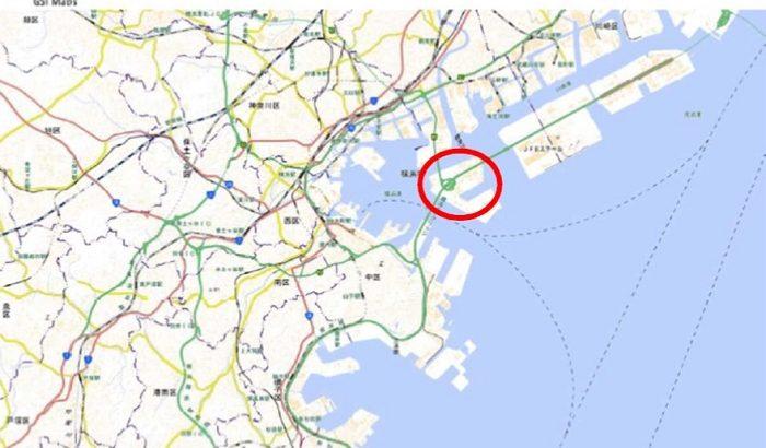横浜港でアカカミアリ約1100匹を確認