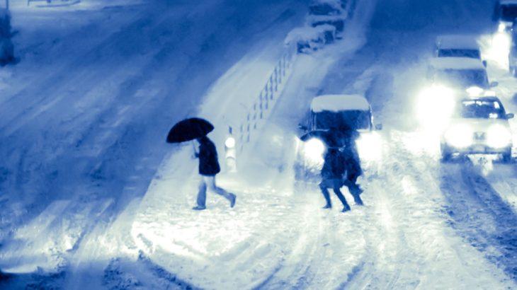東京海上日動火災、「首都圏を中心とした大雪への備え」で今月20日にセミナー