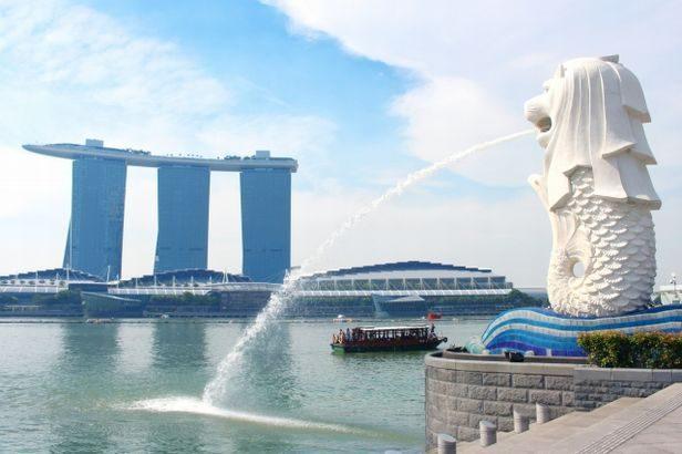 国分グループ本社、シンガポールで低温食品物流