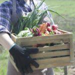食品ロス削減へ先進技術で「買い過ぎ」回避実現目指す