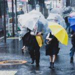 【災害】台風10号影響、宅配などで混乱続く
