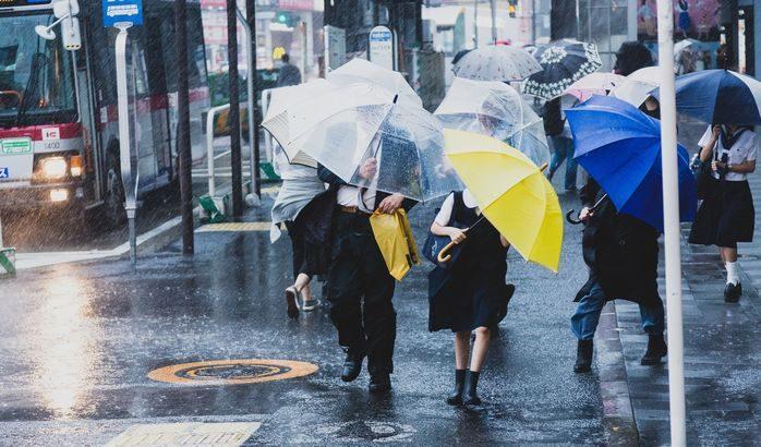 【災害】台風19号が影響、路線2社が20都府県で集配遅延・見合わせ