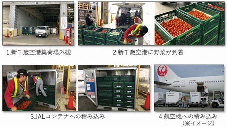 農業総合研究所が新千歳空港内に農産物の集荷場開設