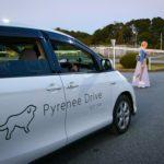 SBSロジコムとスタートアップのPyrenee、ドライバー用AIアシスタント開発で提携
