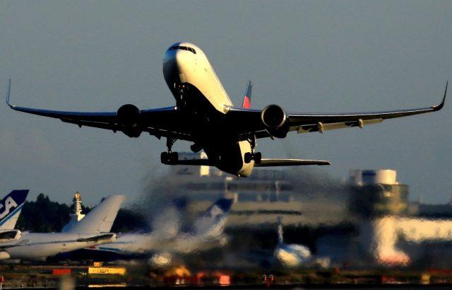 成田空港の国際線貨物便、20年度の発着数は80%増で過去最高