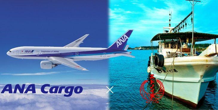 ANACargoと3rdcompass、海産物の当日配送サービス提供目指す