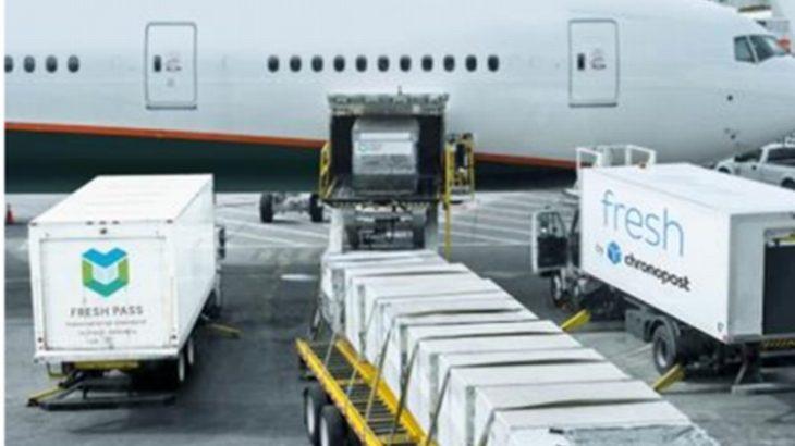 ヤマトHD、食品の小口保冷輸送基準普及へ欧州の国際物流大手とコンソーシアム設立