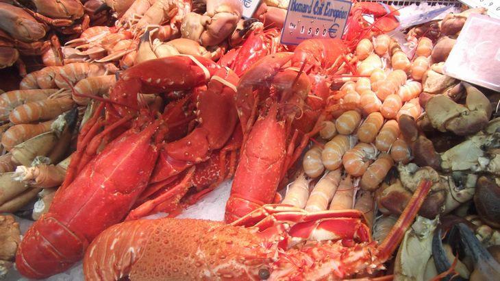 近鉄エクスプレス、カナダの海産生鮮品専門物流会社を買収