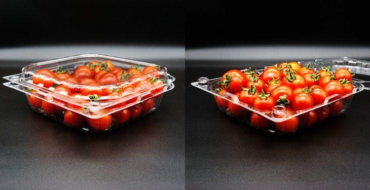 エフピコチューバ、輸送積載効率高める新たな青果物容器を発売