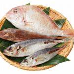 「らでぃっしゅぼーや」で未利用魚の宅配を本格展開